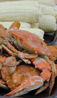 Steamed crabs caught on a Natural Light Fishing Charters Chesapeake Bay crabbing trip.